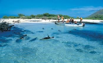 Galápagos: um tesouro de conhecimento