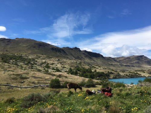 PROMOÇÕES – Explora Patagonia