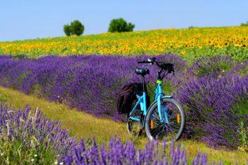 7 Destinos para conhecer a Europa de bicicleta