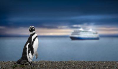 Cruzeiro com Amyr Klink é chance de conhecer a Antártida